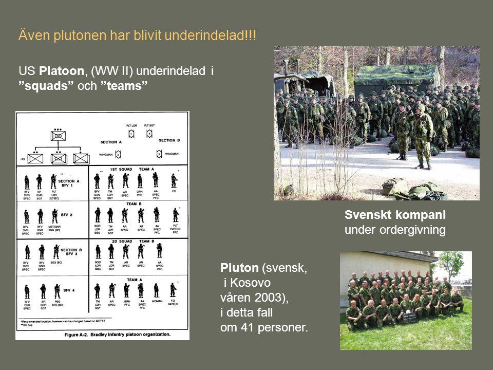 """Svenskt kompani under ordergivning US Platoon, (WW II) underindelad i """"squads"""" och """"teams"""" Pluton (svensk, i Kosovo våren 2003), i detta fall om 41 pe"""