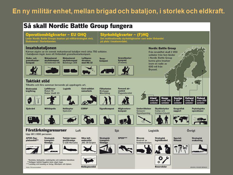 En ny militär enhet, mellan brigad och bataljon, i storlek och eldkraft.