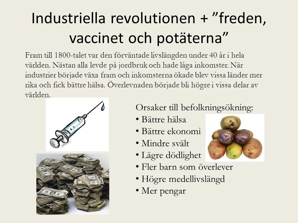 """Industriella revolutionen + """"freden, vaccinet och potäterna"""" Orsaker till befolkningsökning: • Bättre hälsa • Bättre ekonomi • Mindre svält • Lägre dö"""