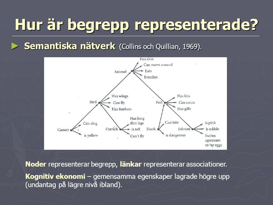 Hur är begrepp representerade? ► Semantiska nätverk (Collins och Quillian, 1969). Noder representerar begrepp, länkar representerar associationer. Kog