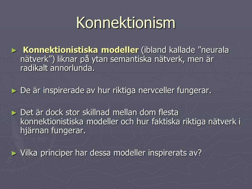 """Konnektionism ► Konnektionistiska modeller (ibland kallade """"neurala nätverk"""") liknar på ytan semantiska nätverk, men är radikalt annorlunda. ► De är i"""