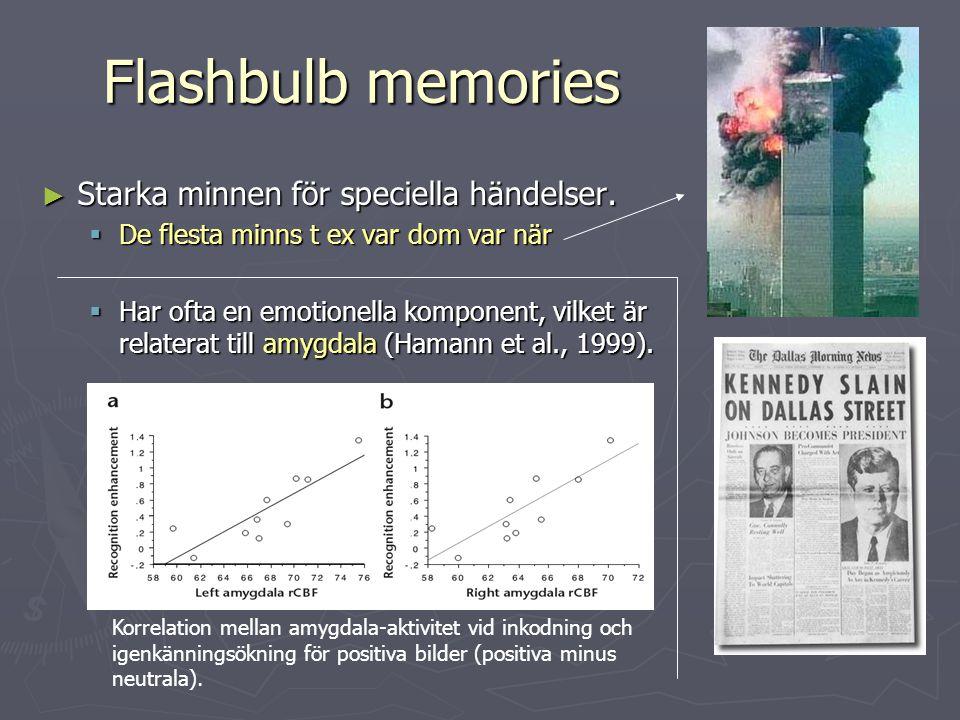 Flashbulb memories ► Starka minnen för speciella händelser.  De flesta minns t ex var dom var när  Har ofta en emotionella komponent, vilket är rela