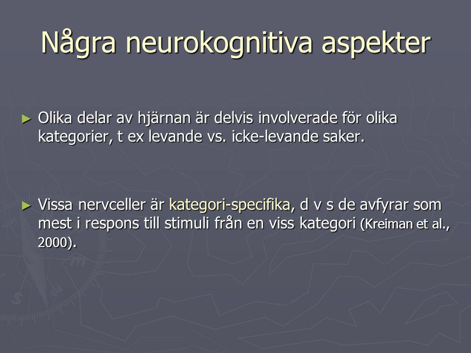 Några neurokognitiva aspekter ► Olika delar av hjärnan är delvis involverade för olika kategorier, t ex levande vs. icke-levande saker. ► Vissa nervce