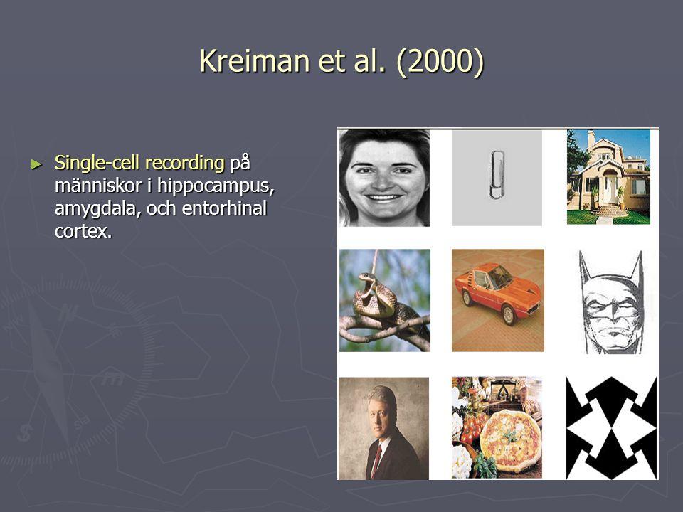Kreiman et al. (2000) ► Single-cell recording på människor i hippocampus, amygdala, och entorhinal cortex.