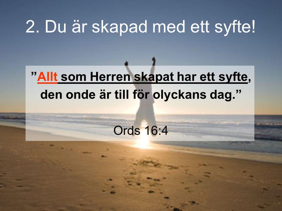 """""""Allt som Herren skapat har ett syfte, den onde är till för olyckans dag."""" Ords 16:4"""