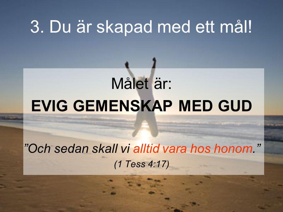 """3. Du är skapad med ett mål! Målet är: EVIG GEMENSKAP MED GUD """"Och sedan skall vi alltid vara hos honom."""" (1 Tess 4:17)"""
