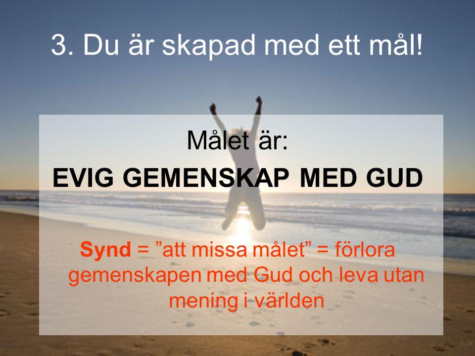 """3. Du är skapad med ett mål! Målet är: EVIG GEMENSKAP MED GUD Synd = """"att missa målet"""" = förlora gemenskapen med Gud och leva utan mening i världen"""