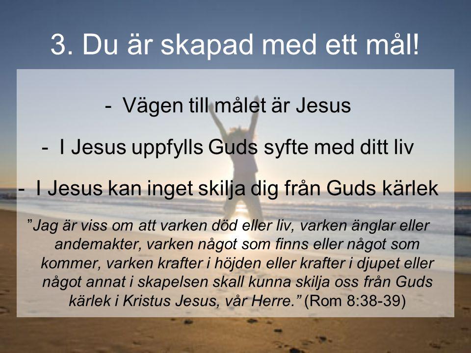 """3. Du är skapad med ett mål! -Vägen till målet är Jesus -I Jesus uppfylls Guds syfte med ditt liv -I Jesus kan inget skilja dig från Guds kärlek """"Jag"""
