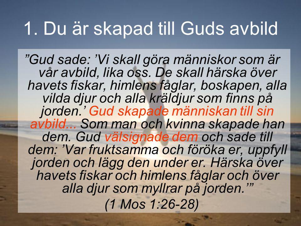 """""""Gud sade: 'Vi skall göra människor som är vår avbild, lika oss. De skall härska över havets fiskar, himlens fåglar, boskapen, alla vilda djur och all"""