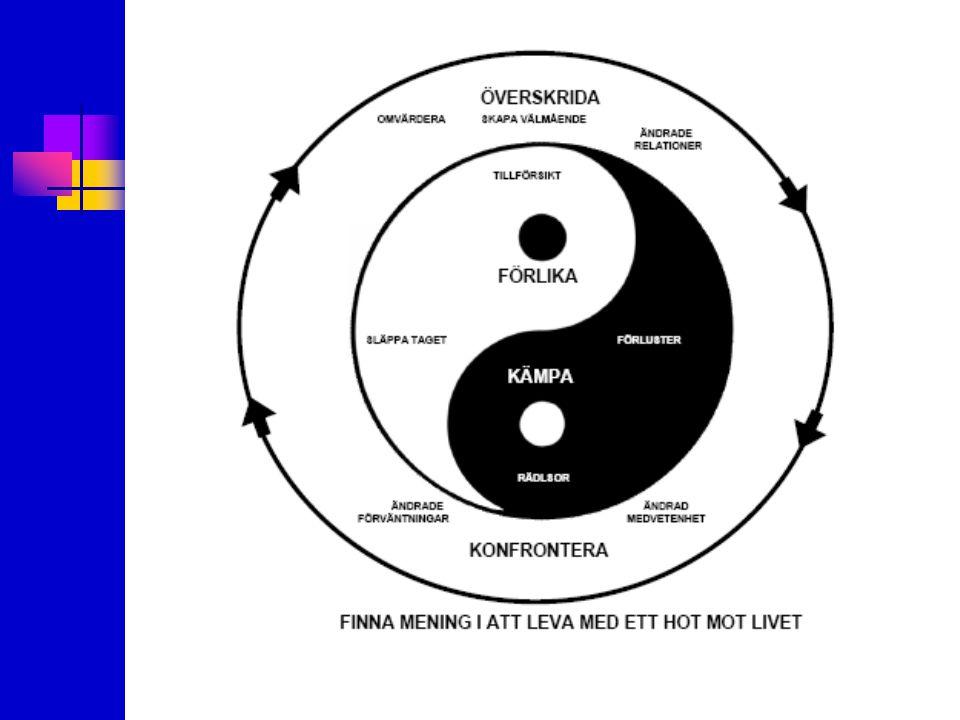 Skapa mening i att leva med ett ständigt hot mot livet Konfrontera Ändrade förväntningar Ändrad medvetenhet Kämpa Förlikas FörlusterSläppa taget Rädslor Tillförsikt Överskrida Omvärdera Ändrade relationer Skapa välmående