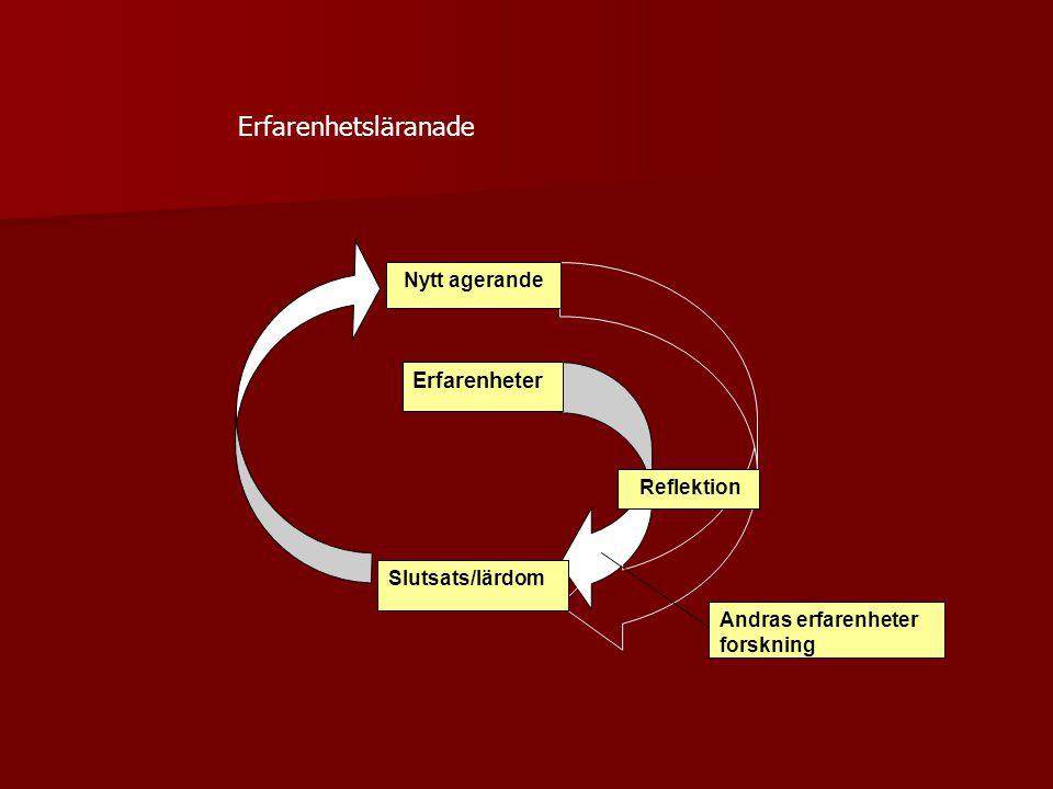 Andras erfarenheter forskning Reflektion Erfarenheter Slutsats/lärdom Nytt agerande Erfarenhetsläranade