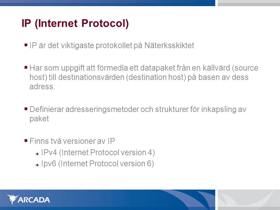 IP (Internet Protocol)  IP är det viktigaste protokollet på Näterksskiktet  Har som uppgift att förmedla ett datapaket från en källvärd (source hos