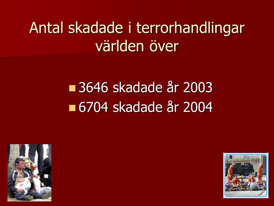 Antal skadade i terrorhandlingar världen över  3646 skadade år 2003  6704 skadade år 2004