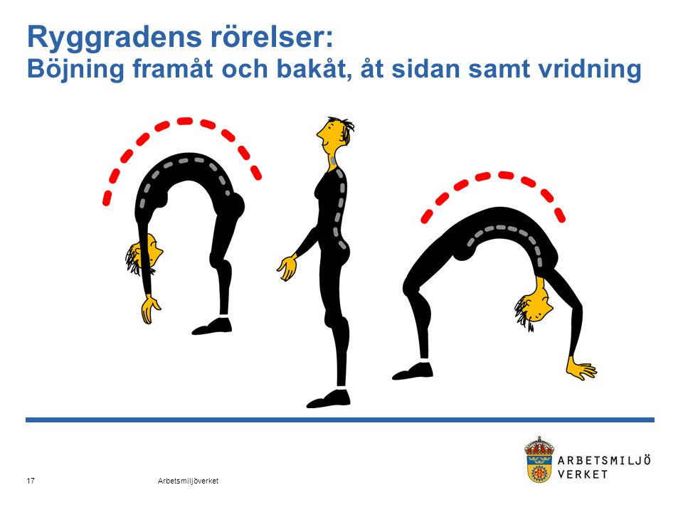 Arbetsmiljöverket 17 Ryggradens rörelser: Böjning framåt och bakåt, åt sidan samt vridning
