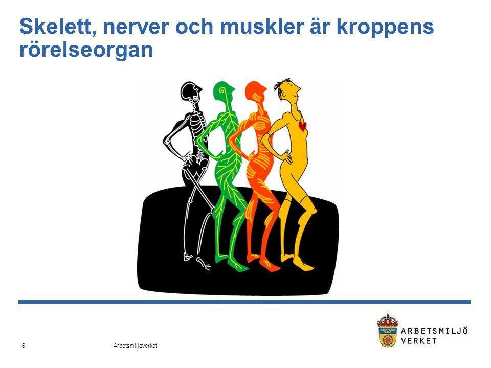 Arbetsmiljöverket 7 Samband mellan fysisk belastning och skaderisk (Winkel 1989)