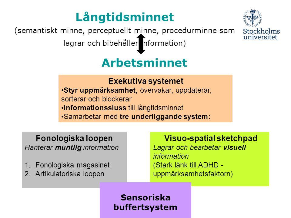 Långtidsminnet (semantiskt minne, perceptuellt minne, procedurminne som lagrar och bibehåller information) Arbetsminnet Exekutiva systemet •Styr uppmä