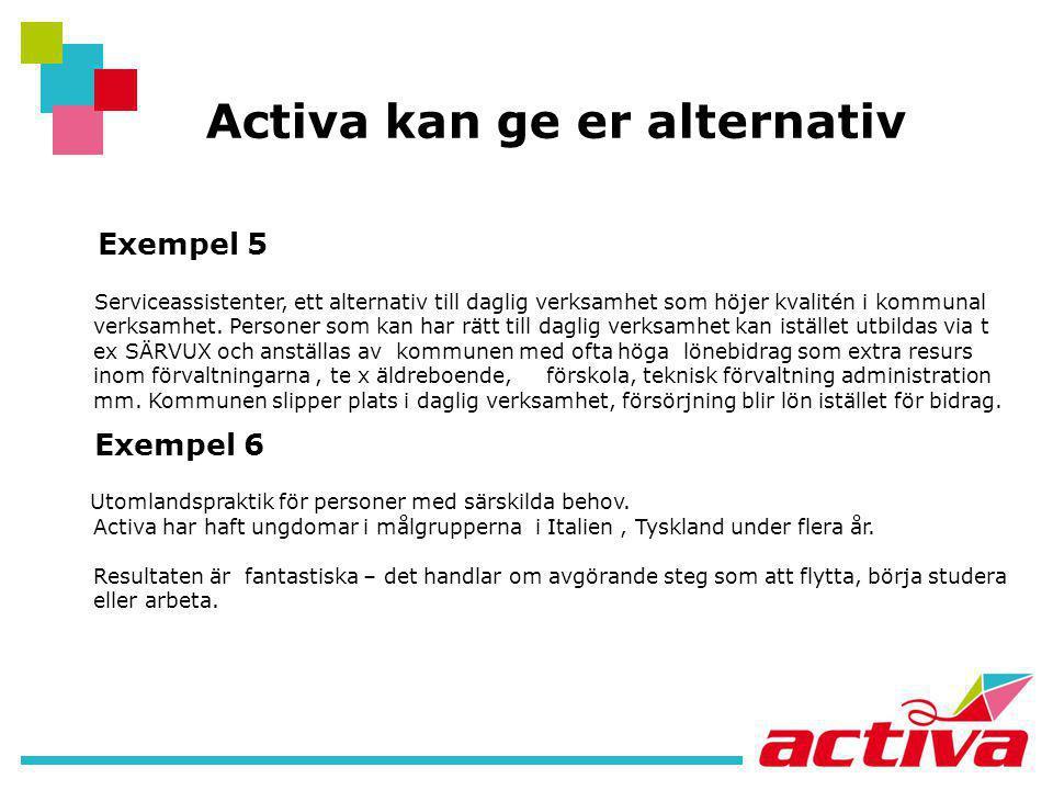 Activa kan ge er alternativ Exempel 5 Serviceassistenter, ett alternativ till daglig verksamhet som höjer kvalitén i kommunal verksamhet. Personer som