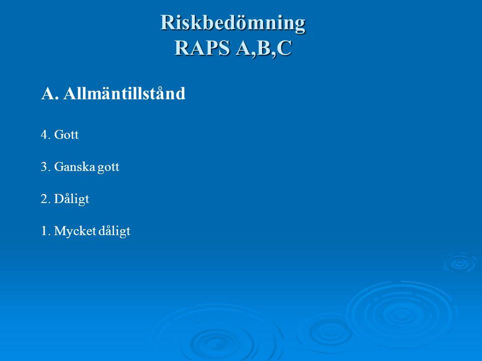 Riskbedömning RAPS A,B,C A. Allmäntillstånd 4. Gott 3. Ganska gott 2. Dåligt 1. Mycket dåligt