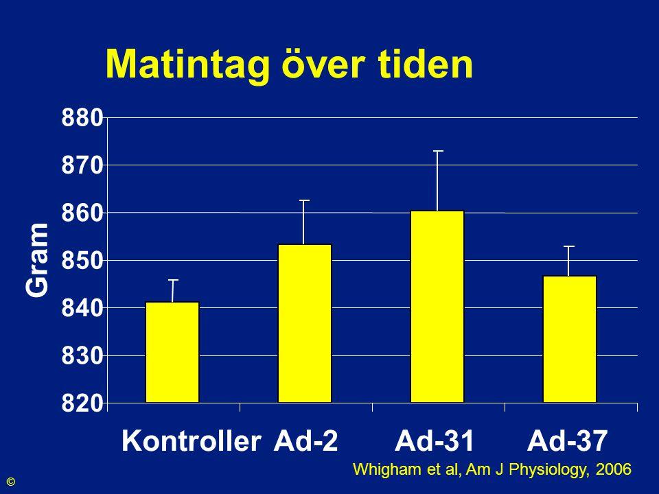 Matintag över tiden 820 830 840 850 860 870 880 Kontroller Ad-2Ad-31Ad-37 Gram Whigham et al, Am J Physiology, 2006 ©