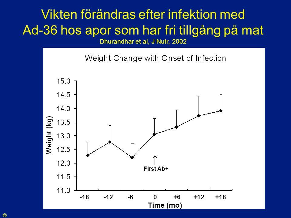 -18 -12 -6 0 +6 +12 +18 Time (mo) ↑ First Ab+ Vikten förändras efter infektion med Ad-36 hos apor som har fri tillgång på mat Dhurandhar et al, J Nutr