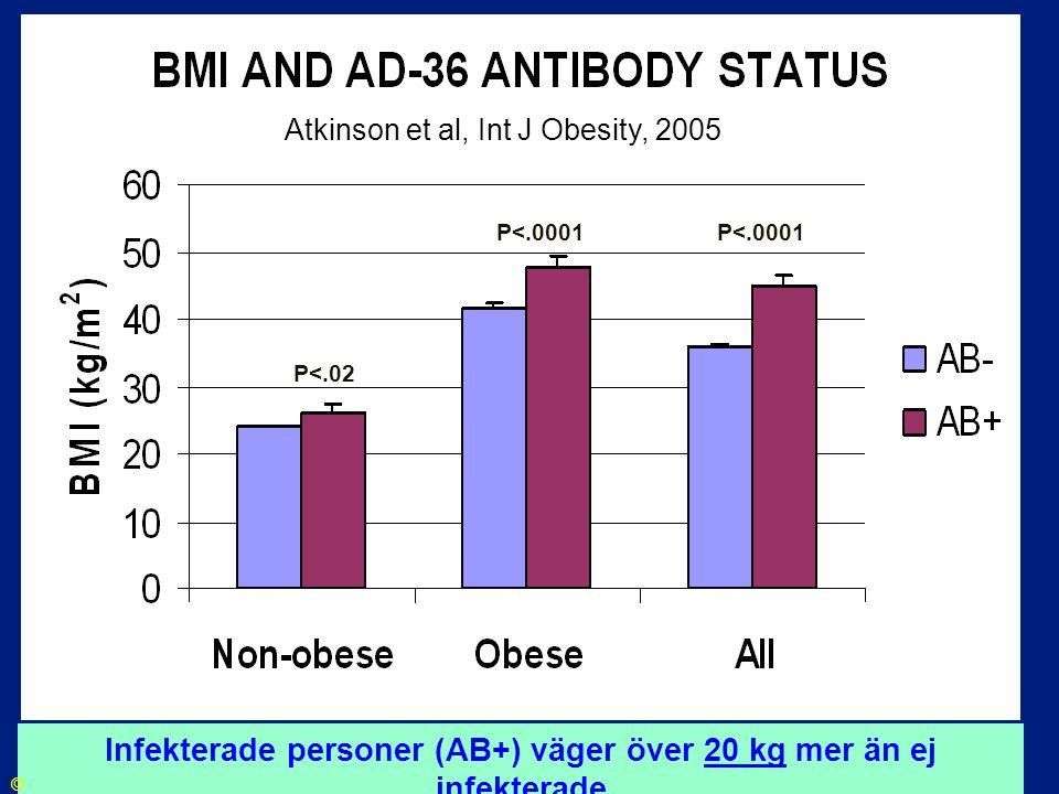 P<.0001 P<.02 Atkinson et al, Int J Obesity, 2005 Infekterade personer (AB+) väger över 20 kg mer än ej infekterade ©