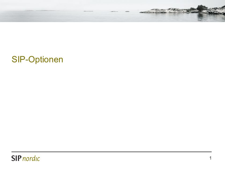 1 SIP-Optionen