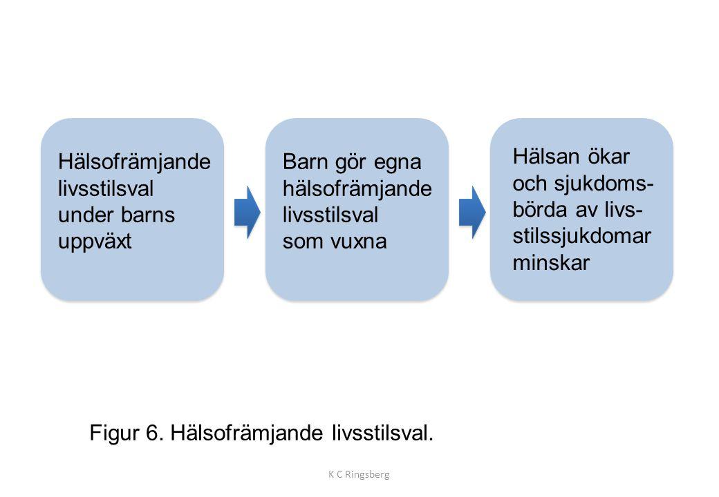 Figur 6. Hälsofrämjande livsstilsval. K C Ringsberg Hälsofrämjande livsstilsval under barns uppväxt Barn gör egna hälsofrämjande livsstilsval som vuxn