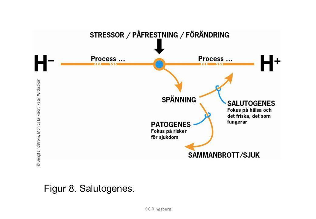 Figur 8. Salutogenes. K C Ringsberg