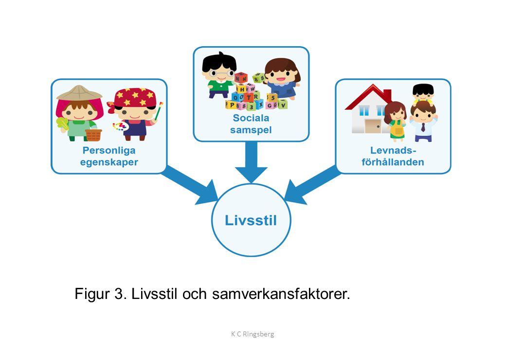 Figur 3. Livsstil och samverkansfaktorer. K C Ringsberg