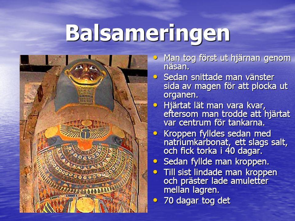 Tutankamons grav hittades 1922 • Tutankamon var en farao som levde på 1400 f.