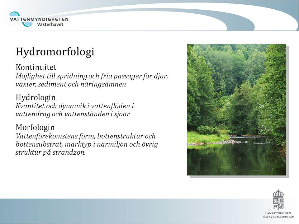 Hydromorfologi Kontinuitet Möjlighet till spridning och fria passager för djur, växter, sediment och näringsämnen Hydrologin Kvantitet och dynamik i v