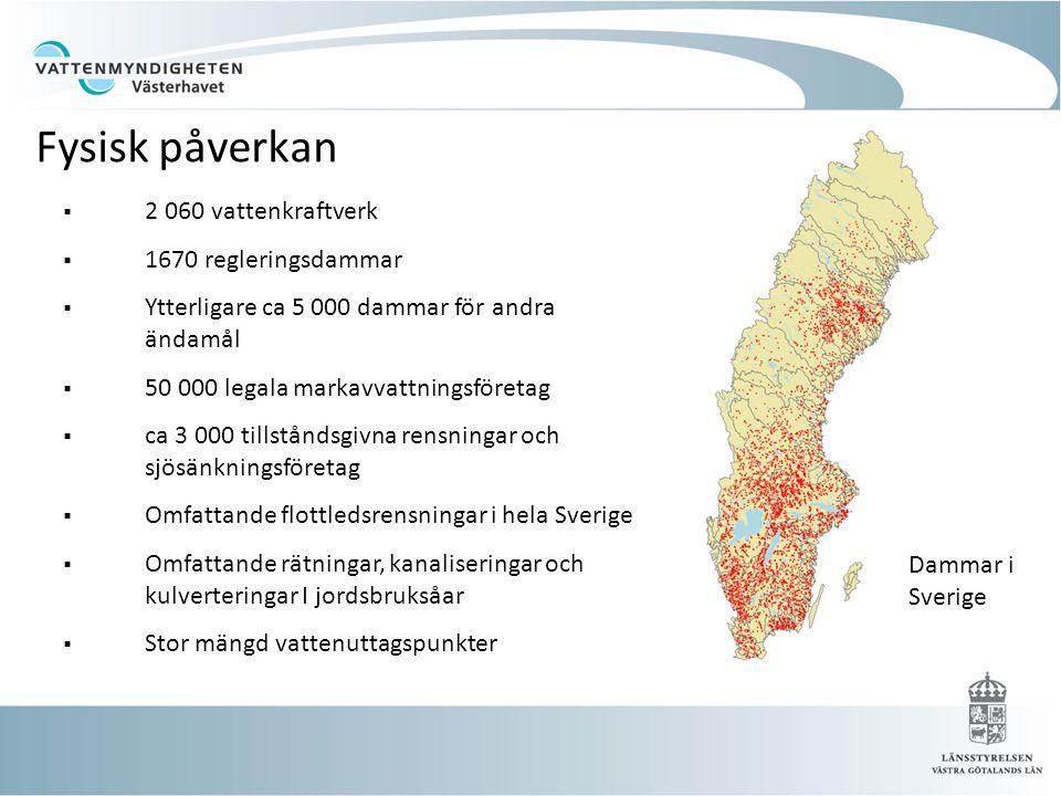 2 060 vattenkraftverk  1670 regleringsdammar  Ytterligare ca 5 000 dammar för andra ändamål  50 000 legala markavvattningsföretag  ca 3 000 tillståndsgivna rensningar och sjösänkningsföretag  Omfattande flottledsrensningar i hela Sverige  Omfattande rätningar, kanaliseringar och kulverteringar I jordsbruksåar  Stor mängd vattenuttagspunkter Dammar i Sverige Fysisk påverkan
