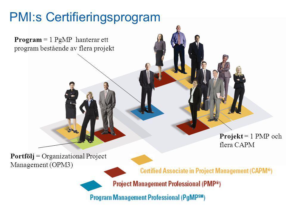 6 Program = 1 PgMP hanterar ett program bestående av flera projekt PMI:s Certifieringsprogram Projekt = 1 PMP och flera CAPM Portfölj = Organizational Project Management (OPM3)