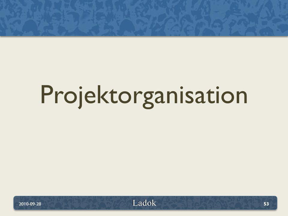 Projektorganisation 2010-09-2853