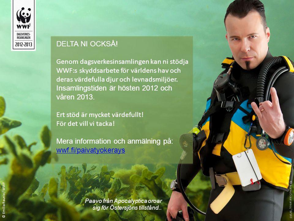 DELTA NI OCKSÅ! Genom dagsverkesinsamlingen kan ni stödja WWF:s skyddsarbete för världens hav och deras värdefulla djur och levnadsmiljöer. Insamlings