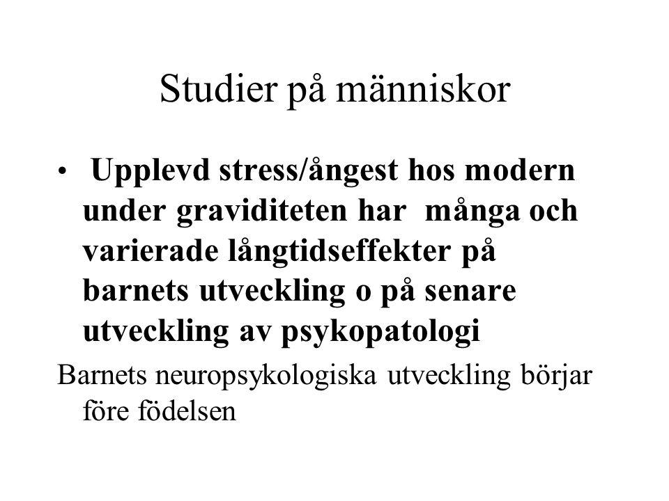 Studier på människor • Upplevd stress/ångest hos modern under graviditeten har många och varierade långtidseffekter på barnets utveckling o på senare
