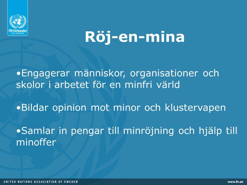 Röj-en-mina •Engagerar människor, organisationer och skolor i arbetet för en minfri värld •Bildar opinion mot minor och klustervapen •Samlar in pengar