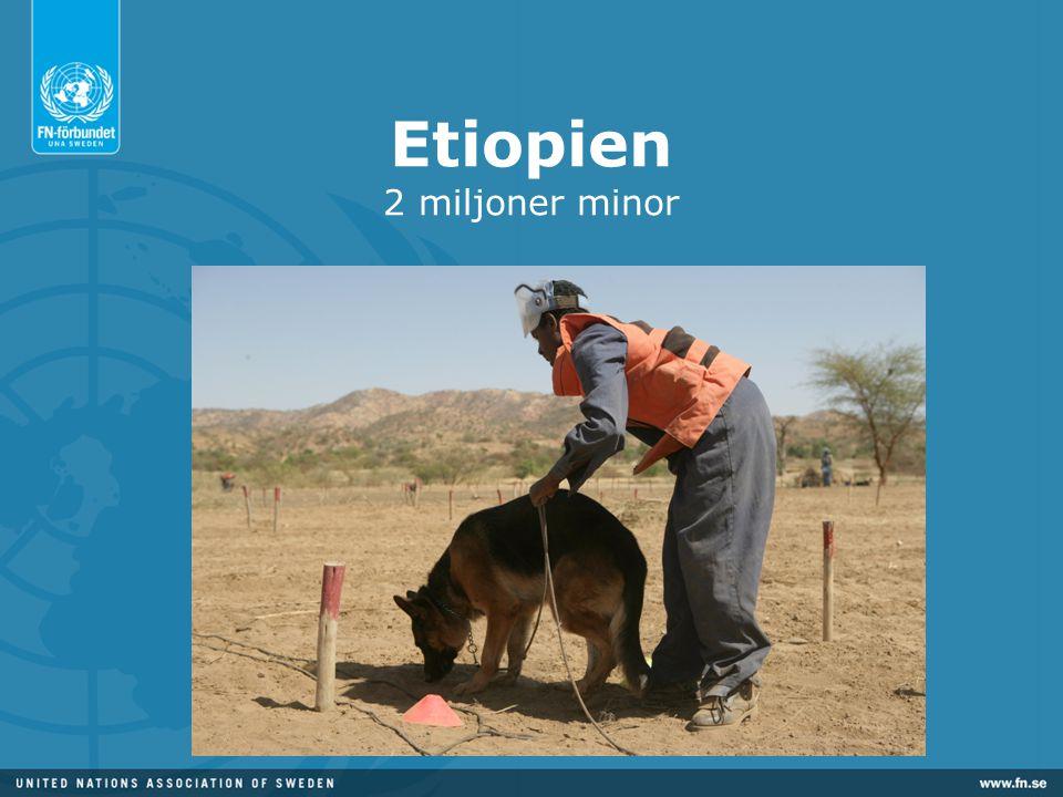 Etiopien 2 miljoner minor