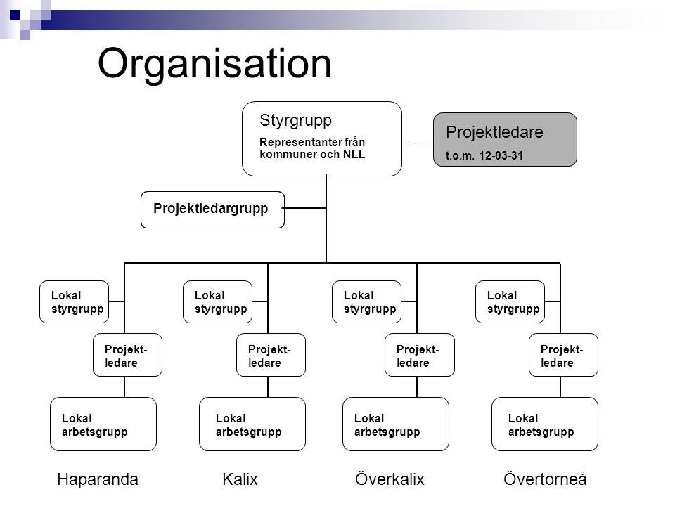 Organisation Styrgrupp Representanter från kommuner och NLL Lokal styrgrupp Lokal styrgrupp Lokal styrgrupp Lokal styrgrupp Projekt- ledare Lokal arbetsgrupp Projektledare t.o.m.