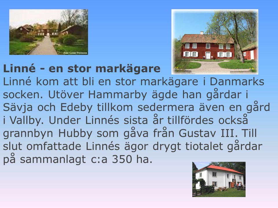 . Sovrummet på Hammarby är tapetserat med blomsterplanscher