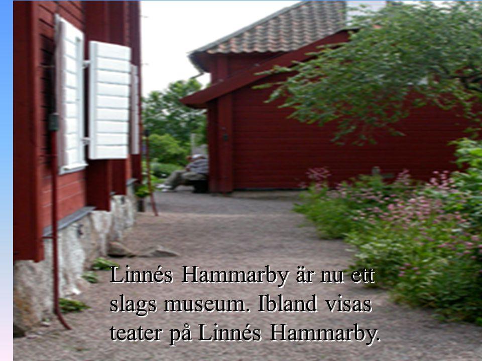 Linné ville ha en gård på landet som lantbruk, änkesäte och som en tillflykt från Uppsalas osunda miljö. Då passade Hammarby bra.