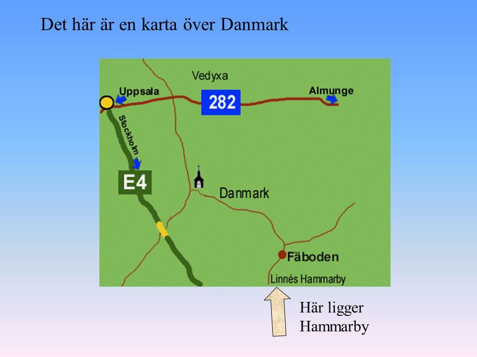 Linnés Hammarby är nu ett slags museum. Ibland visas teater på Linnés Hammarby.