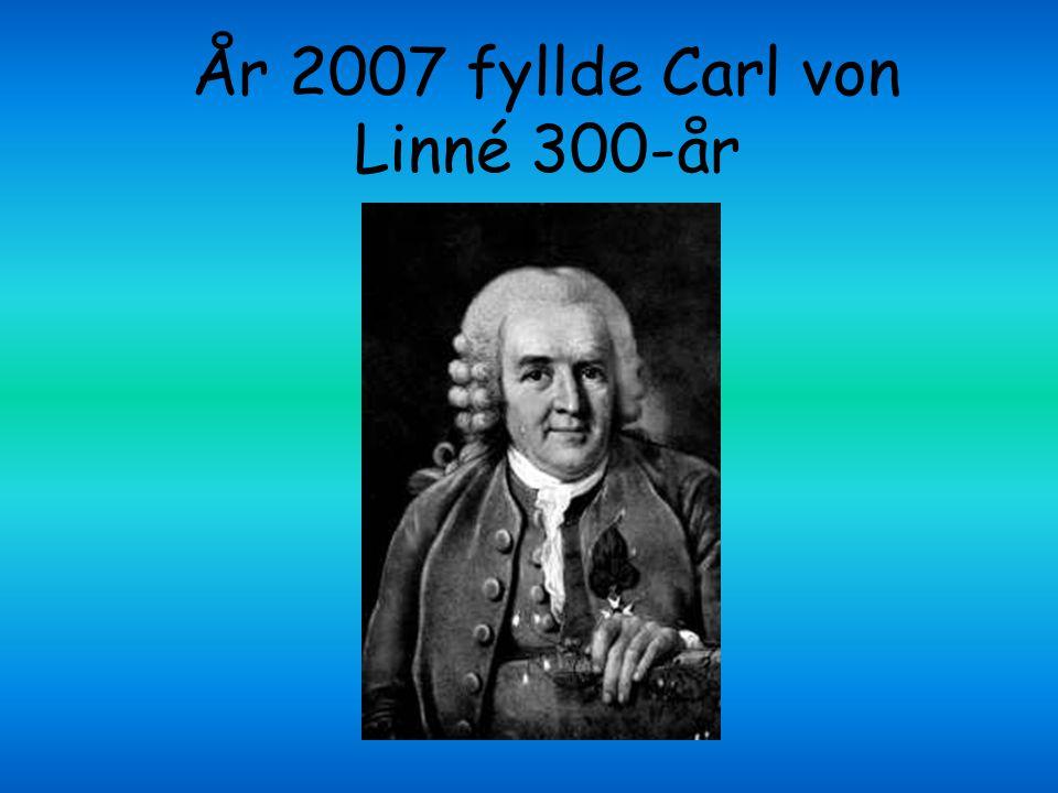 Carl von Linné är världsberömd för att han ordnade växt-, djur- och mineralriket på ett vetenskapligt sätt.