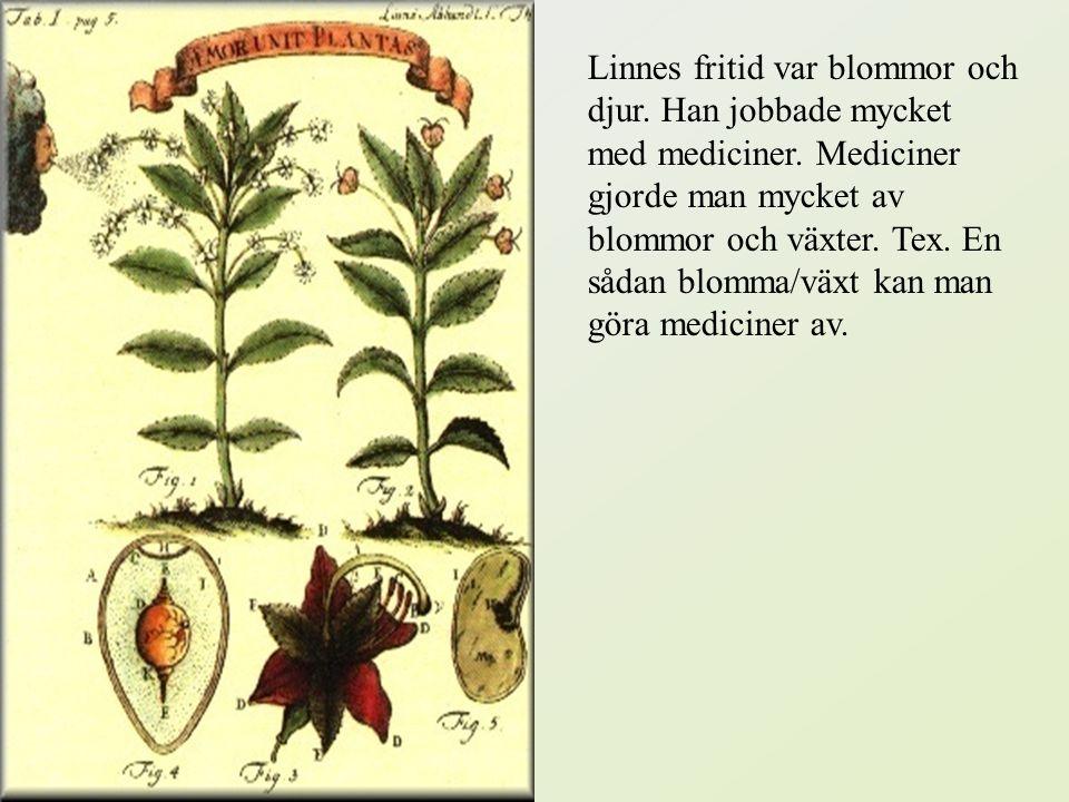 På sjuttonhundratalet kunde man inte studera enbart botanik vid universitetet. Om man var botanikintresserad var enda sättet att lära sig mera att utb
