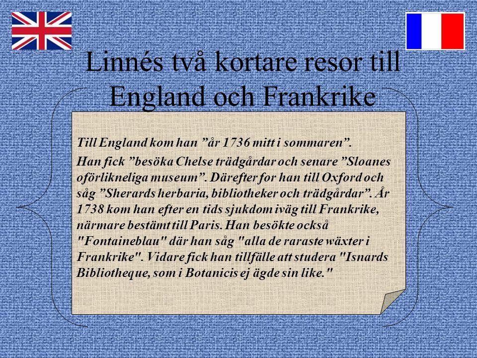 Linnés två kortare resor till England och Frankrike Till England kom han år 1736 mitt i sommaren .