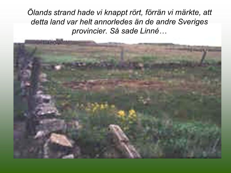 Linné - en stor markägare Linné kom att bli en stor markägare i Danmarks socken.