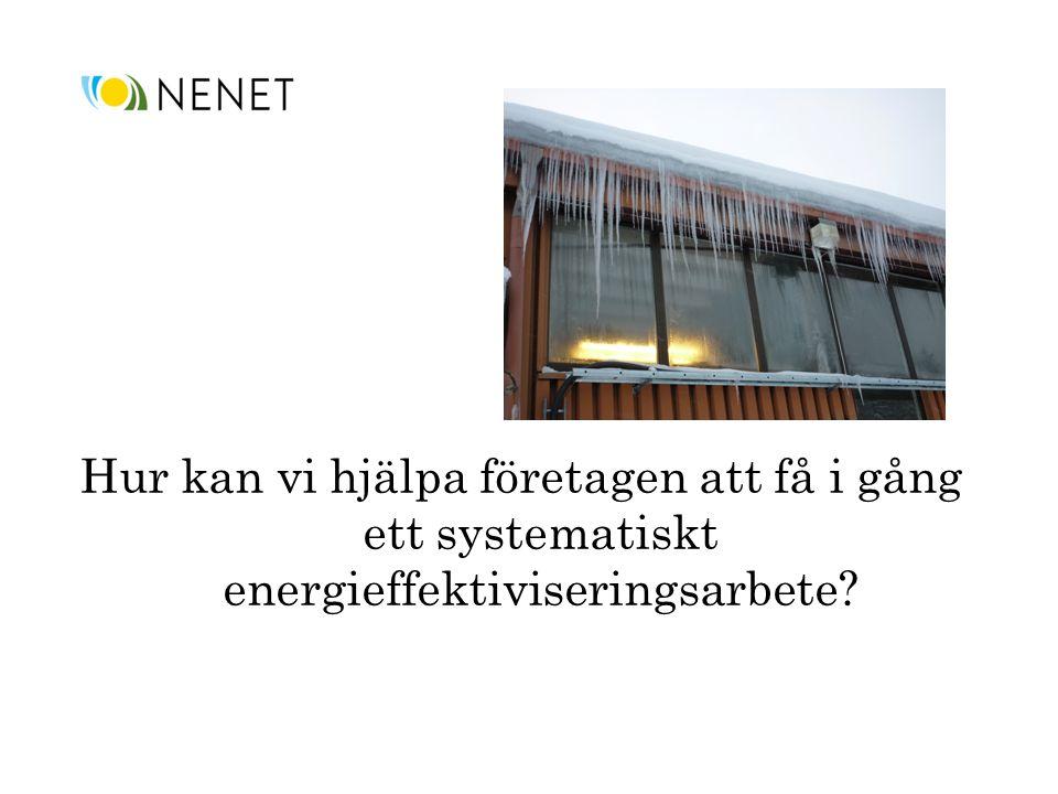 Hur kan vi hjälpa företagen att få i gång ett systematiskt energieffektiviseringsarbete?