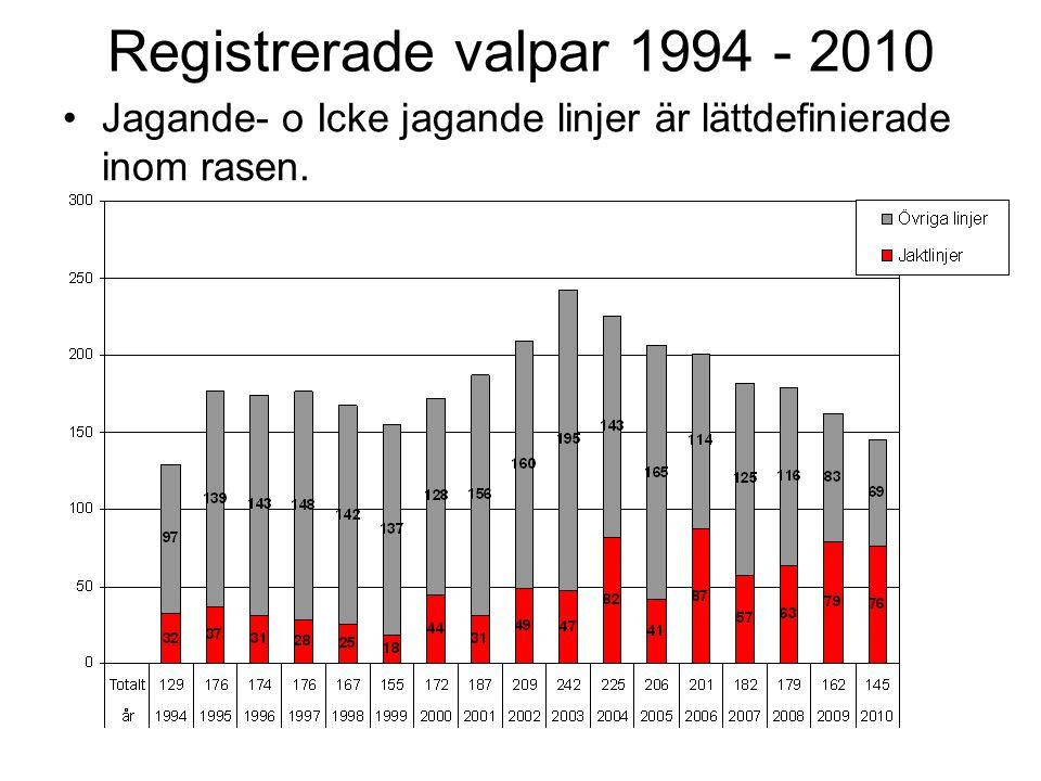 Registrerade valpar 1994 - 2010 •Jagande- o Icke jagande linjer är lättdefinierade inom rasen.