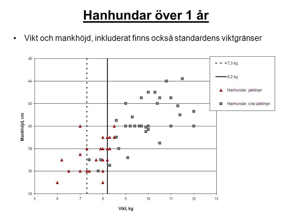 Hanhundar över 1 år •Vikt och mankhöjd, inkluderat finns också standardens viktgränser