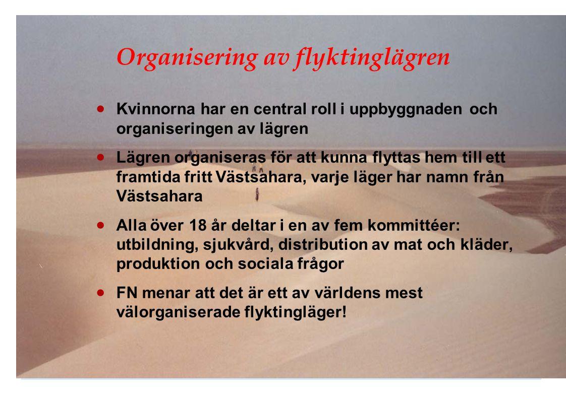 Organisering av flyktinglägren  Kvinnorna har en central roll i uppbyggnaden och organiseringen av lägren  Lägren organiseras för att kunna flyttas
